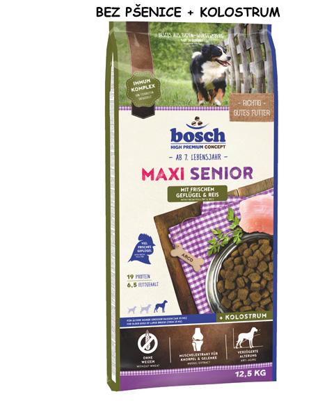 Maxi Senior 1 Kopie